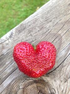 jordgubbshjarta