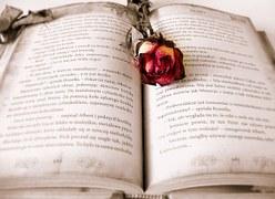 book-419589__180