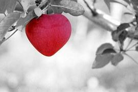 apple-570965__180
